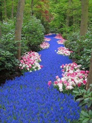 River of Flowers, Keukenho, Holland